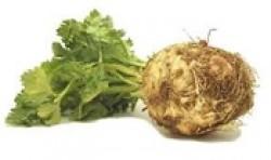 Aardappelpuree van Knolselderij